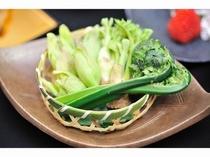 採れたての山菜を天ぷらに