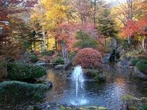 陽龍庭の紅葉-4