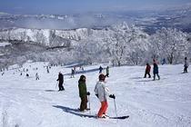 野沢温泉スキー場2