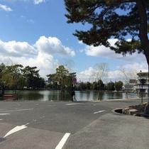 *周辺スポット:奈良公園にある「猿沢池」