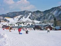 キッズパークも併設のファミリー向けの国境スキー場も車で約15分です。