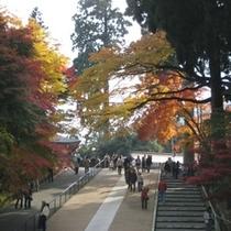 秋の比叡山