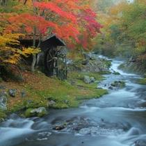 ホテル敷地内 滝の湯川(秋)