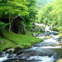 ホテル敷地内 滝の湯川
