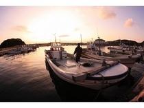 阿那賀港の漁師さん