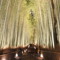 【嵐山花灯路】ライトアップなど、見どころ満載☆