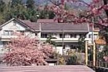 本館と河津桜