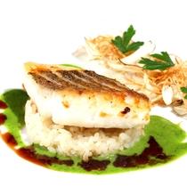 レギュラー魚