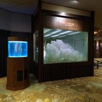 ロビーには本物の流氷とクリオネ水槽を通年展示