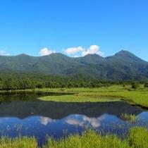 夏の知床五湖。爽やかさ満点★