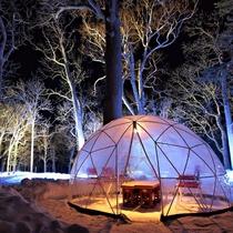 知床の夜の森を新たに彩る「知床流氷フェス」。森と流氷を一緒に楽しめます。