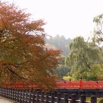 【周辺】紅葉と中橋〜秋の高山は色とりどりの紅葉を楽しんで〜