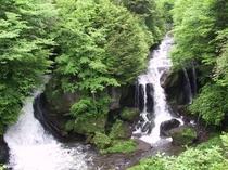 竜頭滝(新緑)