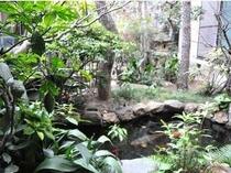 中庭には池もあります。ほっと一息つける眺めです