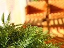 木目調で落ち着きある雰囲気のロビー