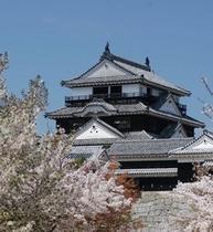 R56桜の松山城