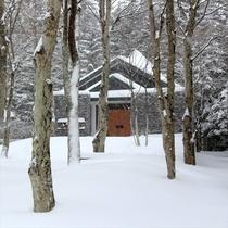 雪景色 中庭