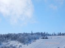 冬山の景色