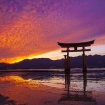 夕日と大鳥居
