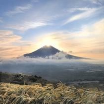 【周辺観光】 イメージ すすきのほと富士山