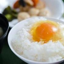 朝食 卵かけごはん