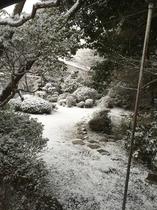 2016雪の庭