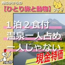 【現金特価・ひとり旅プラン】