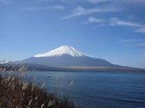 富士山に一番近い湖、五湖中一番大きい山中湖♪宿から徒歩数分!