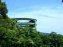 河津七滝のループ橋、宿から30分ほどです。