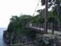 伊豆高原に来たら、誰もが立ち寄る城ヶ崎の吊り橋、高さ23m、目がくらむー