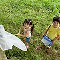 那須高原は自然いっぱい昆虫もいっぱい!カブトムシは捕まえられるかな!?