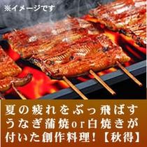 うなぎ蒲焼or白焼き