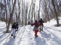兎和野高原でスノーシュー体験