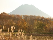 Autumn Mt.Yotei