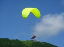 Niseko Paragliding