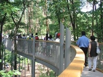 国営アルプスあづみの公園