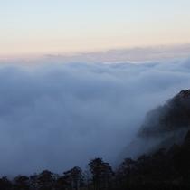 ■五老ヶ岳の雲海