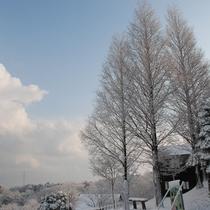 【園内風景】クラブハウスから見る冬の風景