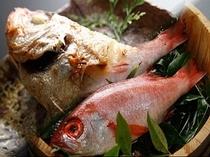 高級魚 のどぐろ