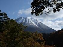 2010/11/16ファミリールームから見た大山
