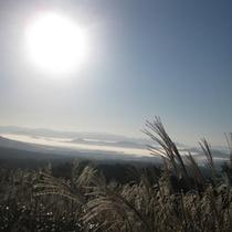雲海 初夏の明け方に見られる幻想的な雲海(車で15分)