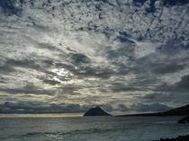 小島を望む