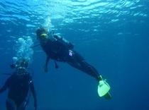 黒潮の海はとても気持良い。