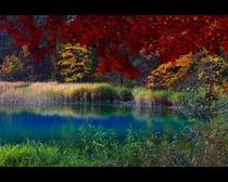 五色沼のひとつ紅葉のるり沼