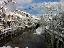 大谿川雪景色