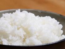 【白米】玄米から精米し、ふっくた炊きあげた北海道米