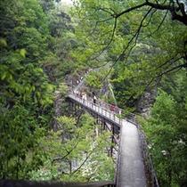 竜王峡ー橋。整備された道。もうダメな方はリターンを。
