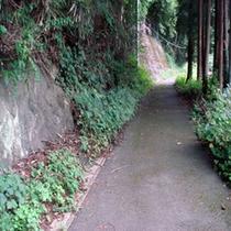 平方山登山路ー傾斜45度の山道。結構キツイ。