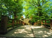 新緑の懐古園