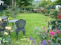 色とりどりのお花に囲まれた庭